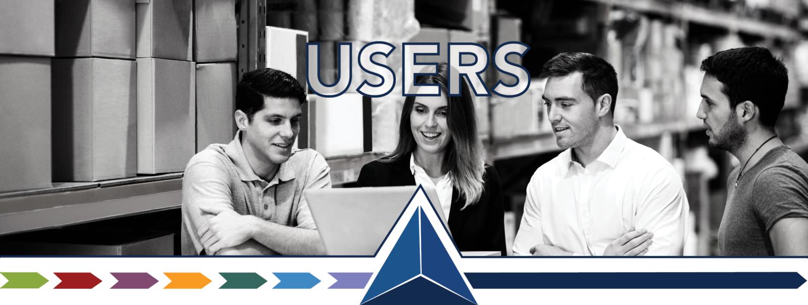 Microsoft ERP users